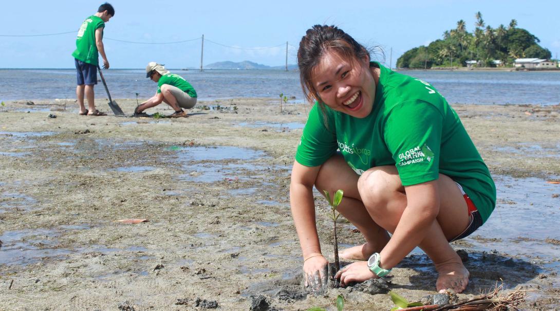 Projects Abroad volontär planterar mangroveskog som en del av hajforskningsprojektet på Fiji.